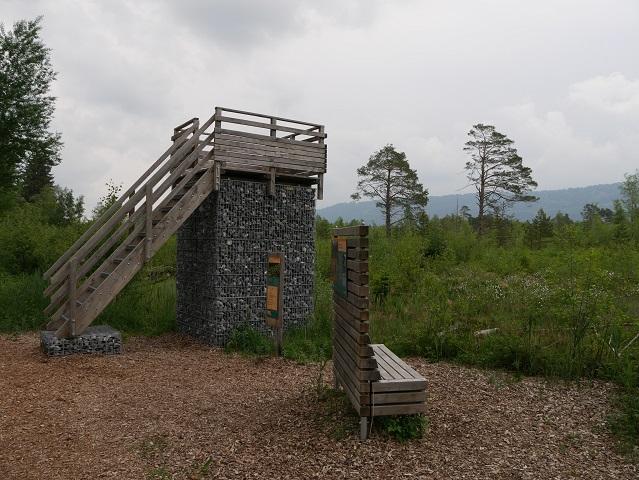 Aussichtsplattform im Werdensteiner Moos