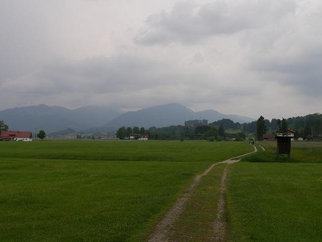 Weg vom Werdensteiner Moos nach Werdenstein