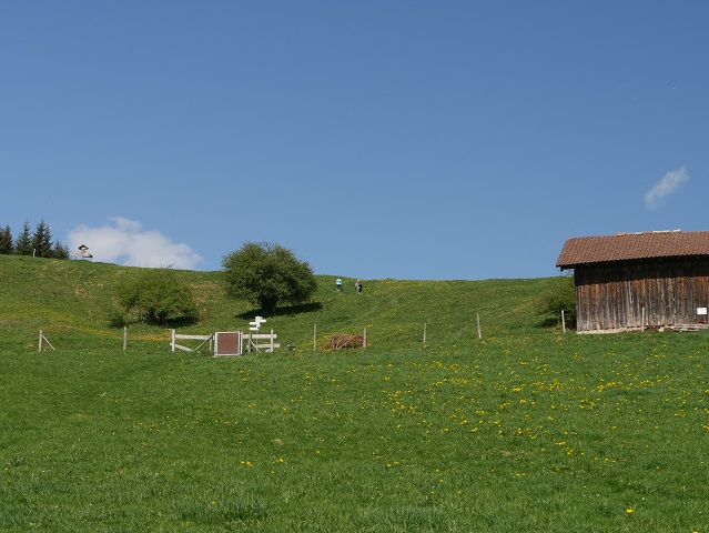 Aufstieg über die Wiese zum Panoramaweg Oy-Mittelberg