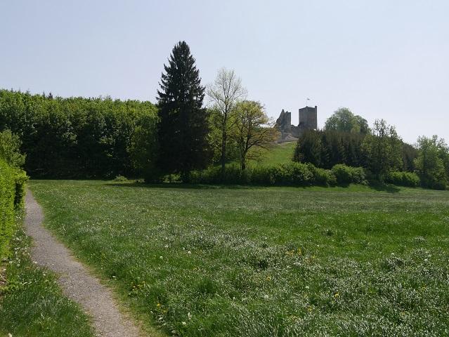 Fußweg zur Burgruine Sulzberg
