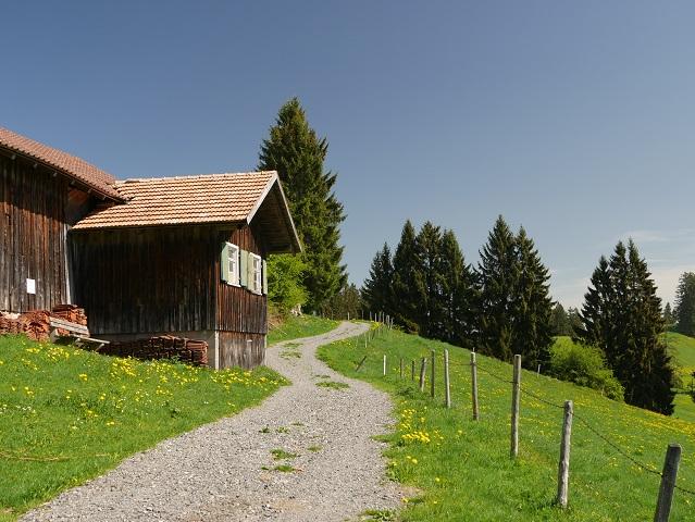 auf dem Panoramaweg Oy-Mittelberg