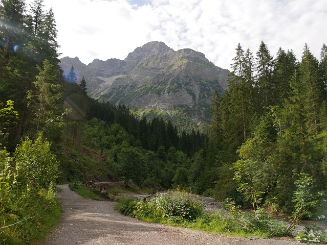 Wanderweg am Bärguntbach