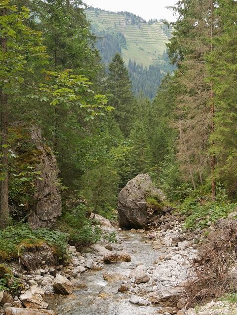 der Gemstelbach im Kleinwalsertal