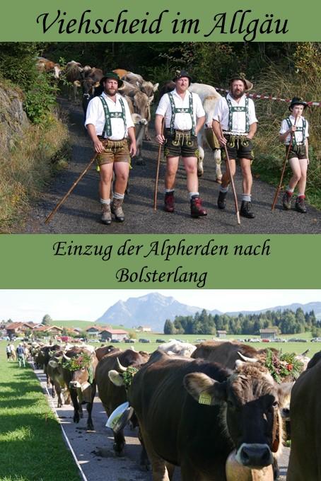 Impressionen vom Viehscheid Bolsterlang