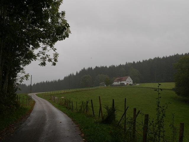 Wanderweg zur Burg Alttrauchburg im Regen