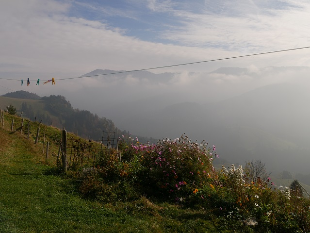 Herbstliches Idyll an der Alpe Obere Schwande am Grünten