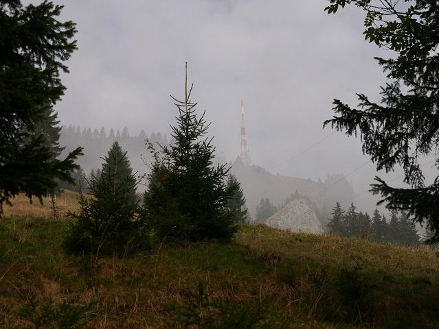 Sendemast auf dem Grünten im Nebel