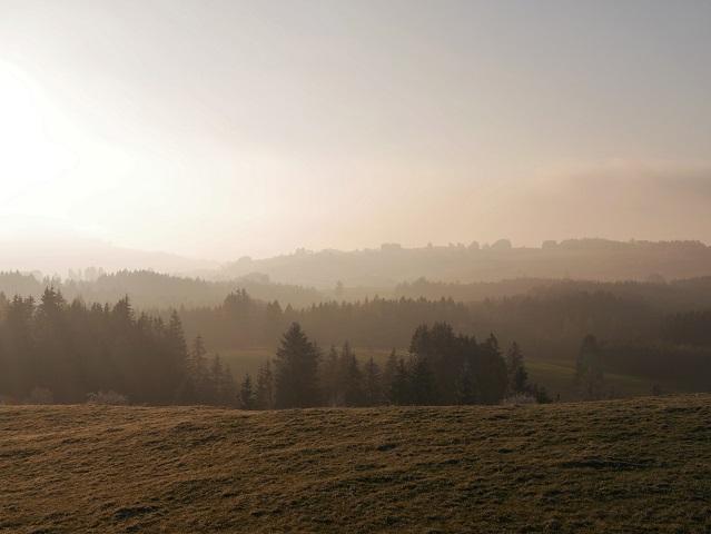 Landschaft - winterliche Nebel-Sonne-Szene im Ostallgäu #FopaNet
