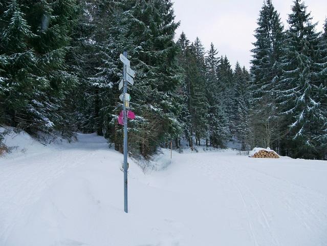 Abzweigung zur Hündeleskopfhütte bei Pfronten