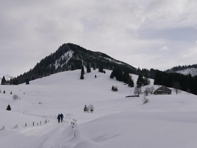 Alpe Sonthofer Hof und Sonthofer Hörnle im Winter