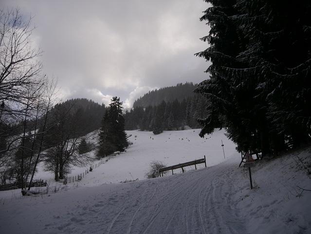Weg zur Hündeleskopfhütte im Winter