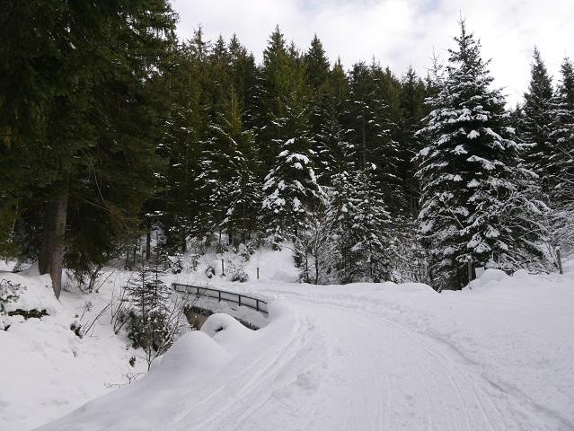 Winterwald mit Brücke