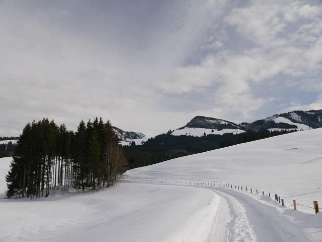 Winterwanderweg zur Alpe Sonthofer Hof