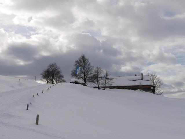 die Alpe Sonthofer Hof im Schnee