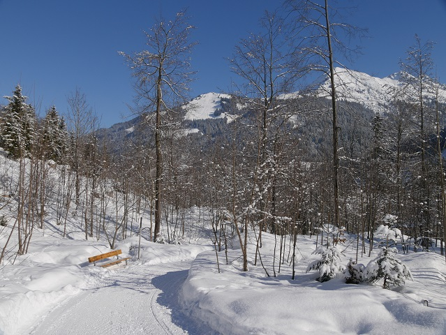 Winterwandern im Kleinwalsertal: Abstieg von Mittelberg zur Breitach