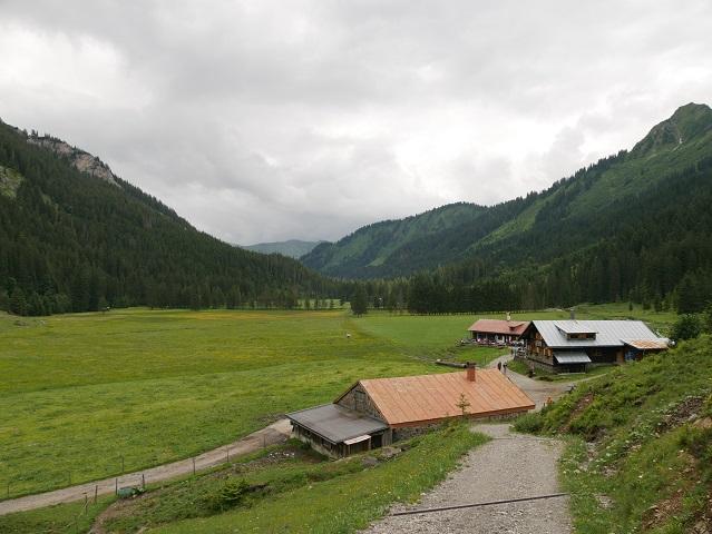 an der Alpe Melköde im Kleinwalsertal