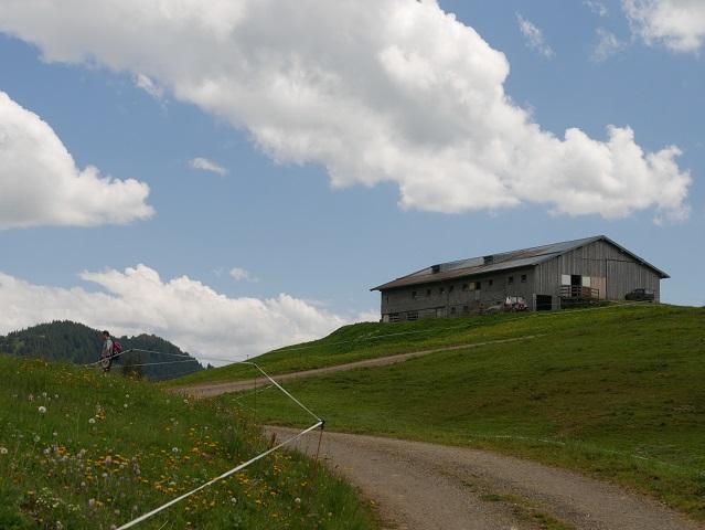 Alpe Spicherhalde