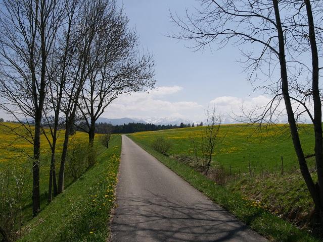 Auf der Radtour Kaufbeuren - Füssen zwischen Steinbach und Roßhaupten