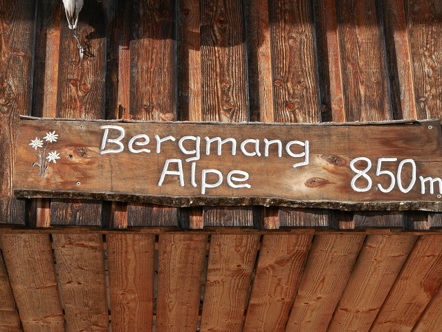 Bergmang Alpe 850 m