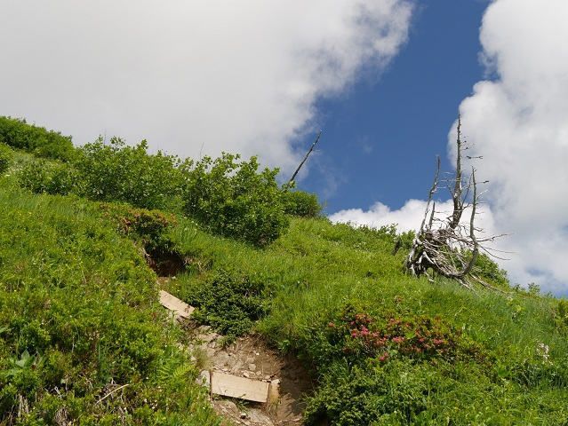 Bergtour aufs Steinmandl - Aufstieg