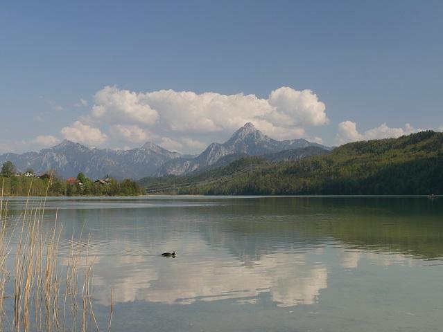 Blick über den Weißensee auf den Säuling