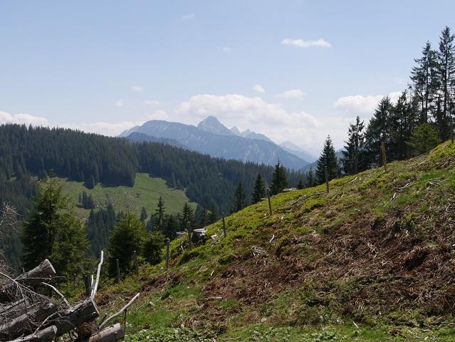 Blick auf die Gipfel des Tannheimer Tals