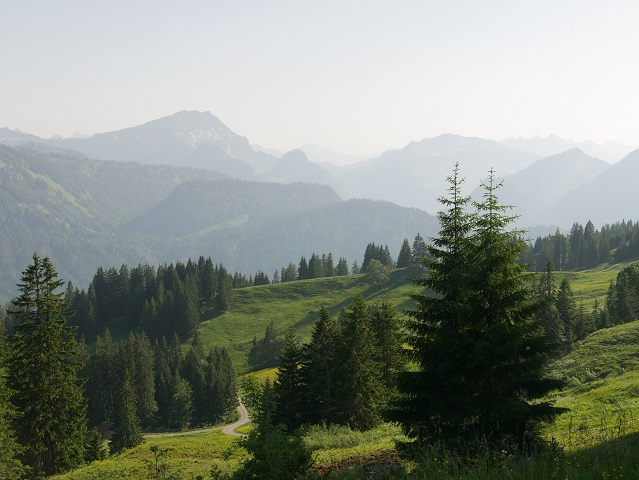 Blick auf die Gipfel des Bregenzerwaldes