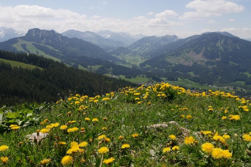 Panoramablick nach Süden von der Reuterwanne