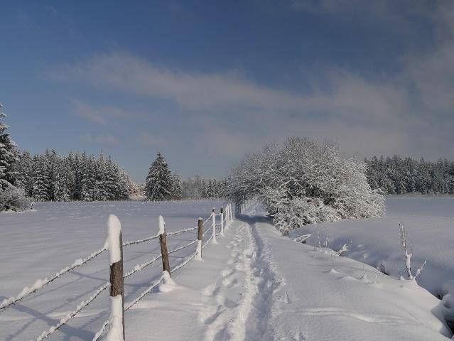 Trampelpfad durch Schneelandschaft
