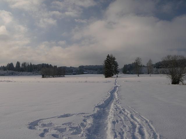 Spaziergänger im Winter am Elbsee