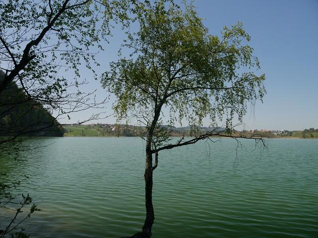 Karbikfeeling am Weißensee