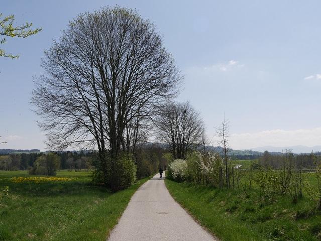 Radweg Kaufbeuren - Füssen bei Rieder
