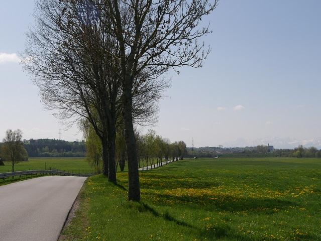 Radweg von Ebenhofen mit Blick auf Marktoberdorf