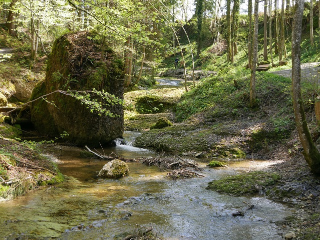 Romantischer Rickenbach im Westallgäu