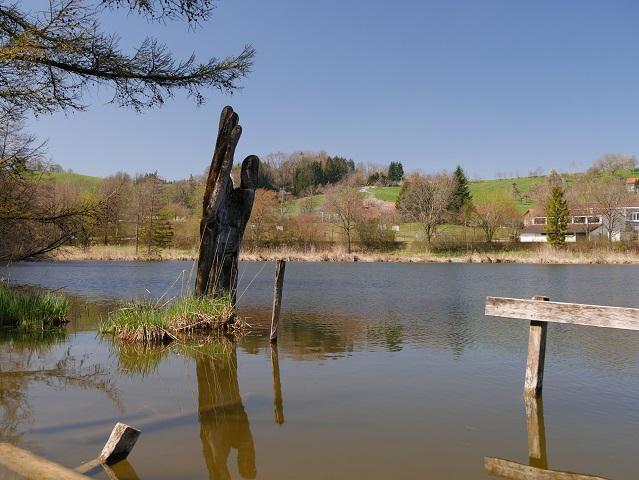 Skulptur Ur-Baum-Hand im Karsee