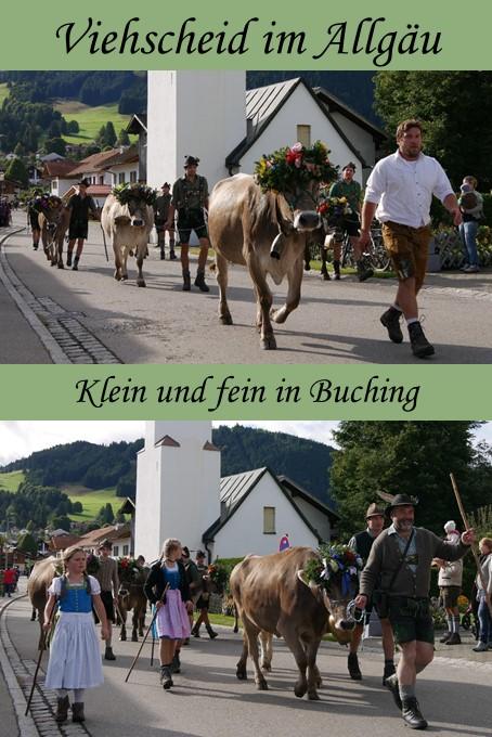 Viehscheid Buching im Ostallgäu