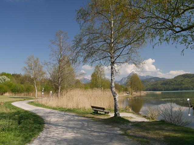 am Weißensee-Nordufer