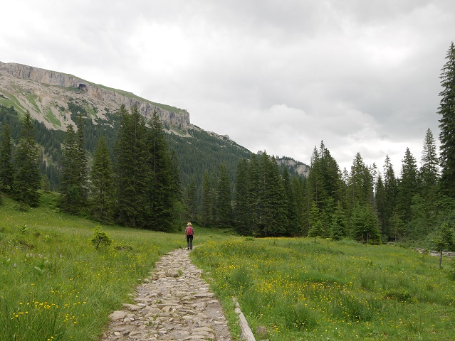 Bergtour aufs Steinmandl - Rückweg durchs Schwarzwassertal