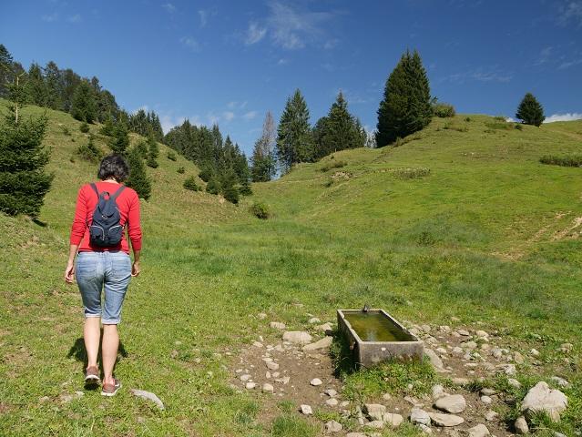 auf dem Weg zur Thaler Höhe