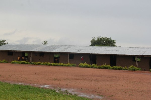Oti Region: Snakes Invade Class, Force Teachers And Students Out