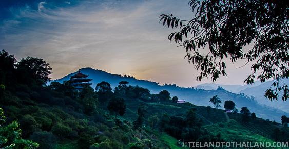 Trip to Mae Salong, Thailand