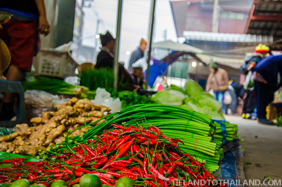 Red Thai Chilies at the Thai Food Market