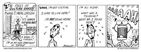 Culture Shock Comic