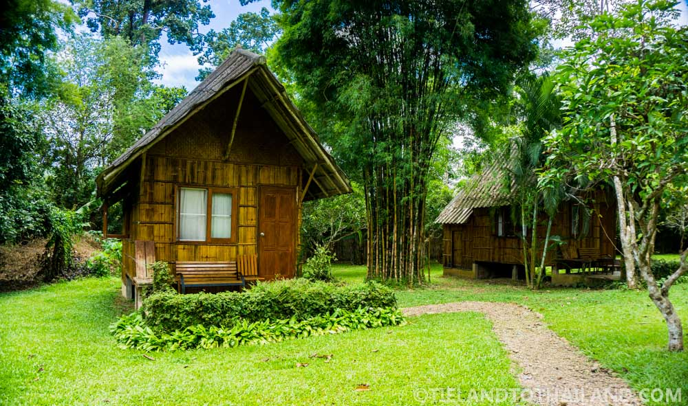 Chiang Dao Nest 1 Double Cabin