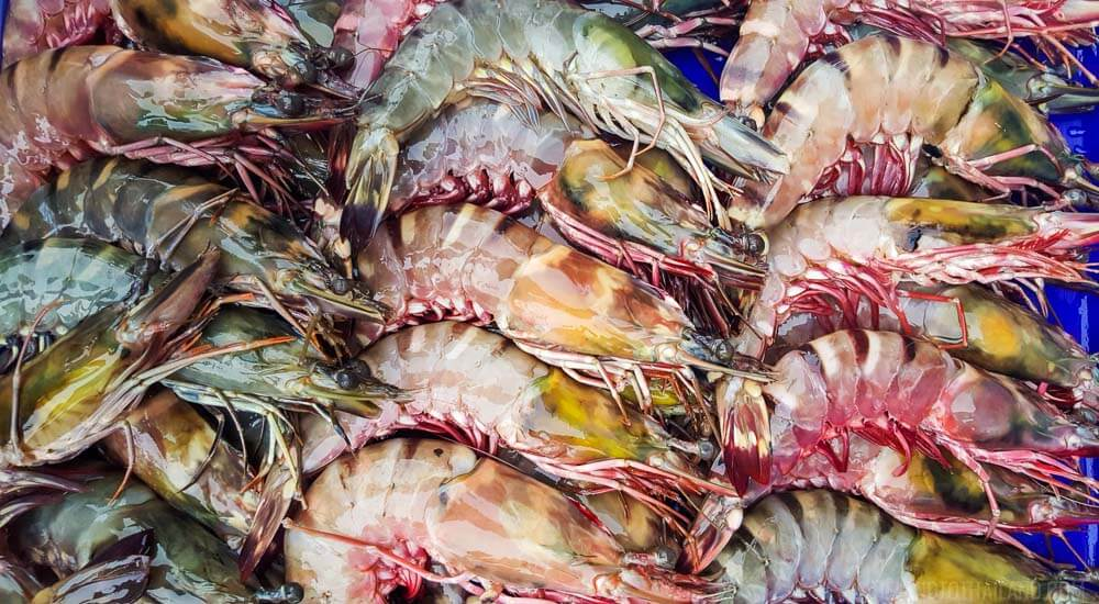 Things to Do: Visit the Rawai Seafood Market in Phuket