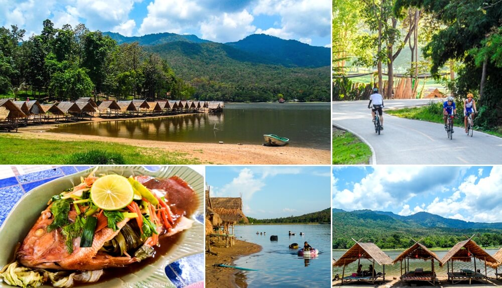 Huay Tung Tao is perfect for a lakeside picnic just 15 minutes away from Chiang Mai Old City