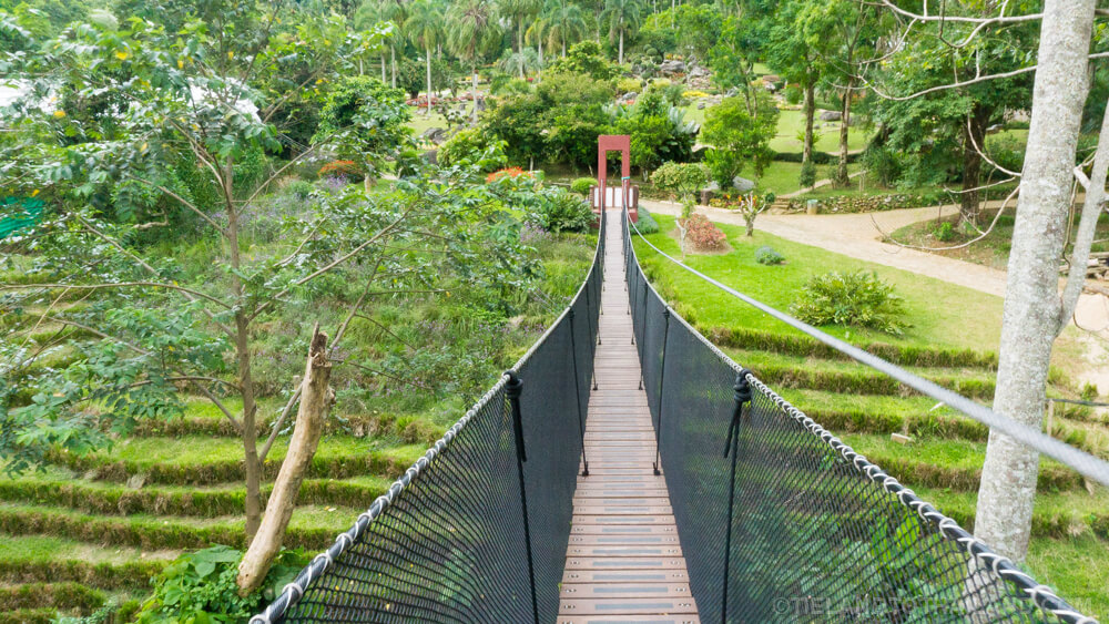 End of the Doi Tung Tree Top Walk