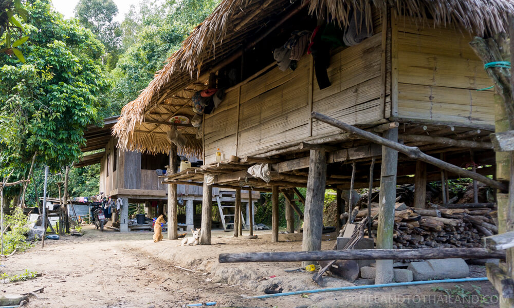 Bungalows in a village during a Chiang Mai hill tribe tour