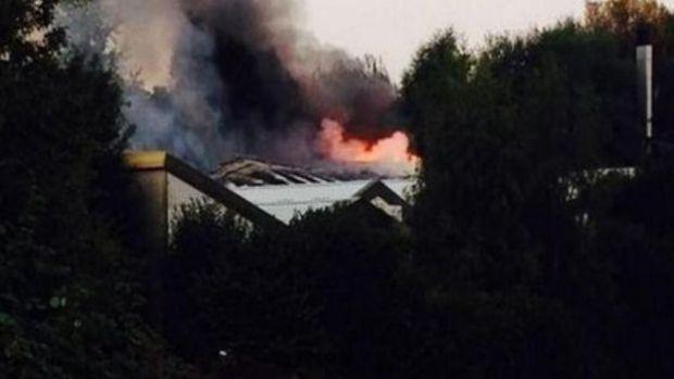 Incendio en albergue de perros en Londres