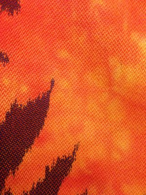 Third phoenix - closeup. Silk warp, bamboo weft.